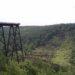 The remains of the Kinzua bridge